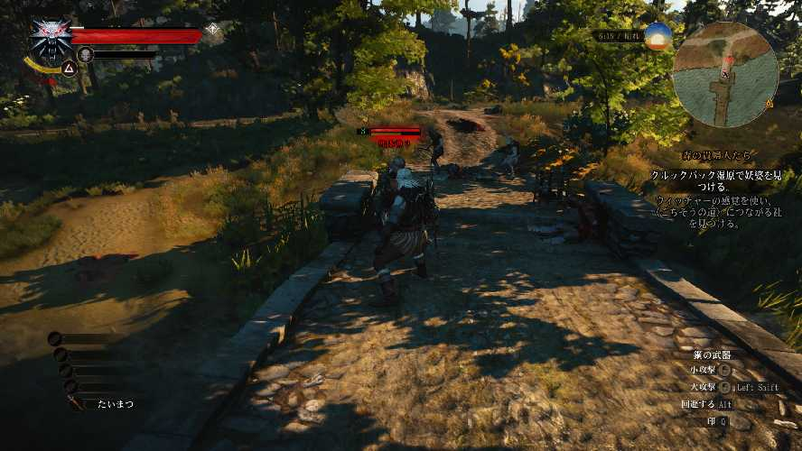 ウィッチャー3の戦闘風景